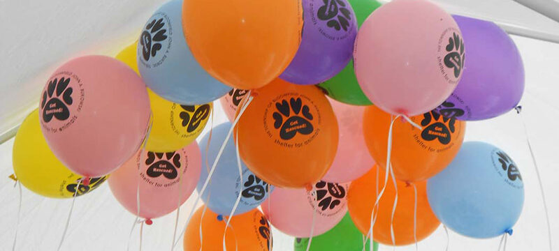 Benefits of Custom Balloons